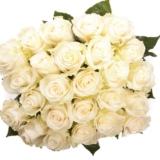 Букет 25 бели рози - Доставка на цветя Варна Magic Flowers