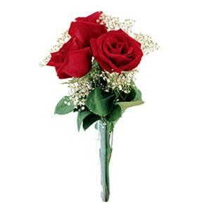 Букет от 3 рози - Доставка на саксийни цветя Варна Magic Flowers