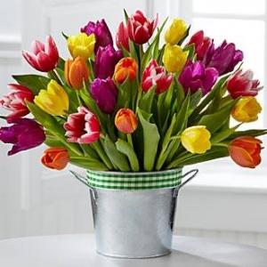 Букет Colourful magic - Доставка на цветя в саксия Magic Flowers