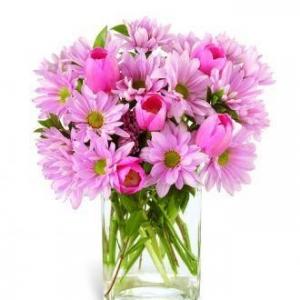 Букет Pink Lady - Доставка на цветя в саксия Magic Flowers