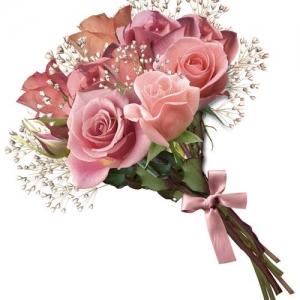 Букет Розова усмивка 9 броя - Доставка на цветя в саксия в град Варна Magic Flowers