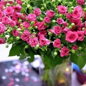 Букет спрей рози - Онлайн магазин за цветя в саксия Magic Flowers