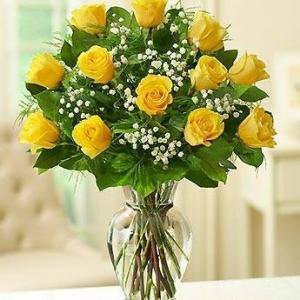 Yellow magic рози - Онлайн магазин за цветя в саксия Magic Flowers