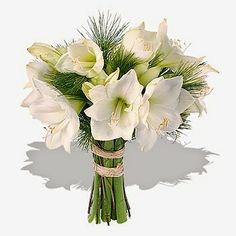 Букет от амарилис - Цветя в саксия Magic Flowers
