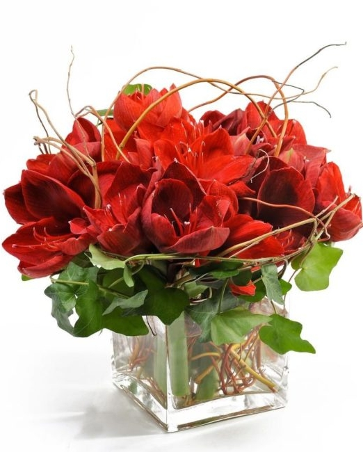 Червен букет - Доставка на саксийни цветя Варна Magic Flowers