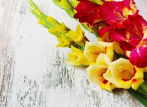 Цветя за мъжете - Доставка на цветя Magic Flowers